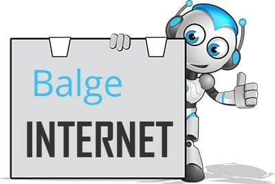 Balge DSL