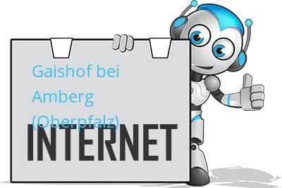 Gaishof bei Amberg (Oberpfalz) DSL