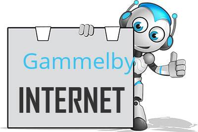 Gammelby DSL