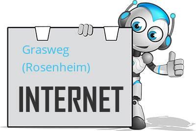 Grasweg, Kreis Rosenheim, Oberbayern DSL