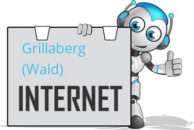 Grillaberg, Wald DSL