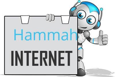 Hammah, Niederelbe DSL