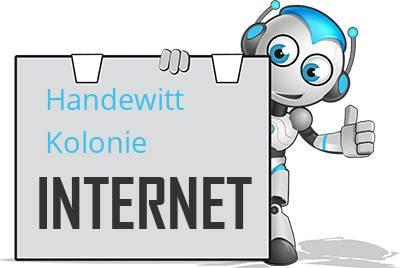 Handewitt Kolonie DSL