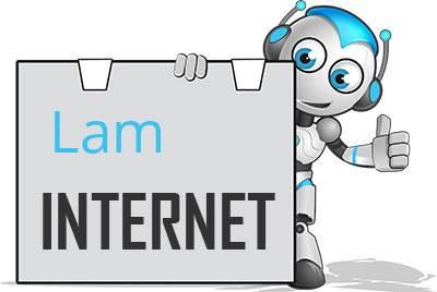Lam, Oberpfalz DSL