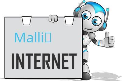 Malliß DSL