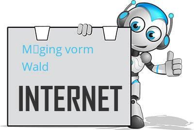 Möging vorm Wald DSL