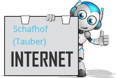 Schafhof (Tauber) DSL
