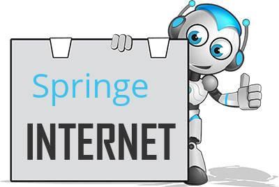 Springe DSL