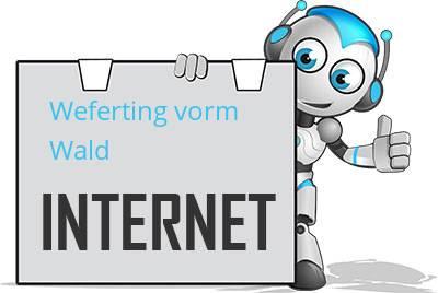 Weferting vorm Wald DSL